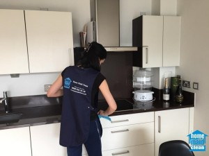 domestic London cleaning services London