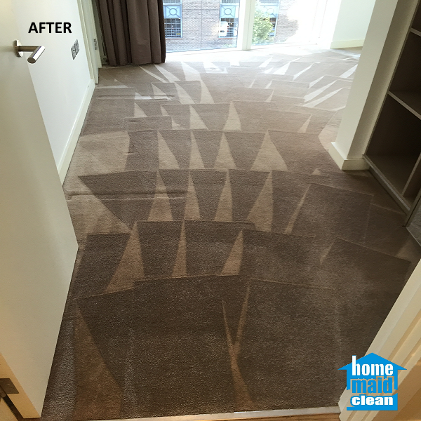 deep move out cleaning carpet cleaning
