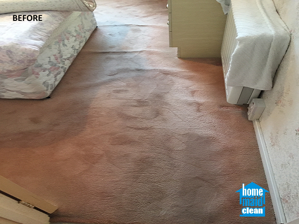 flooded carpet cleaning Wimbledon