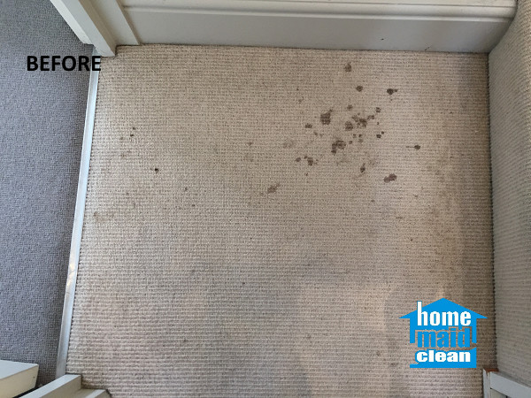 blood stains carpet cleaning