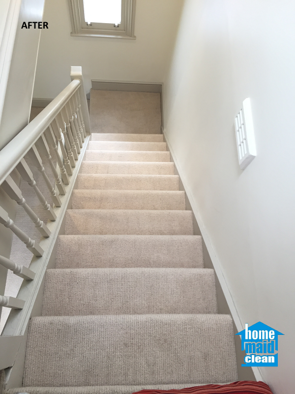 Communal Staircase Carpet Cleaning In Marylebone London
