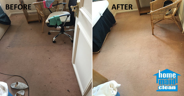Carpet cleaning rug cleaning