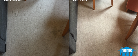 Wine-stained carpet cleaning in Battersea, London SW11