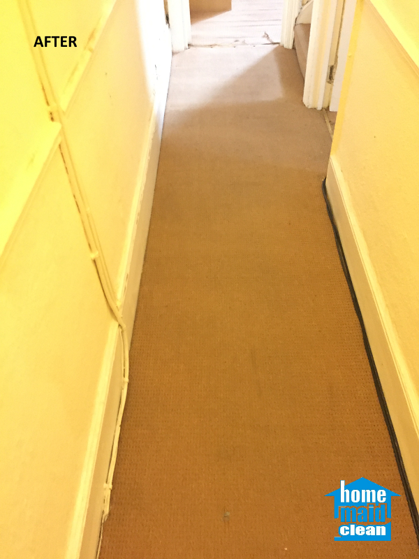 office carpet steam cleaning